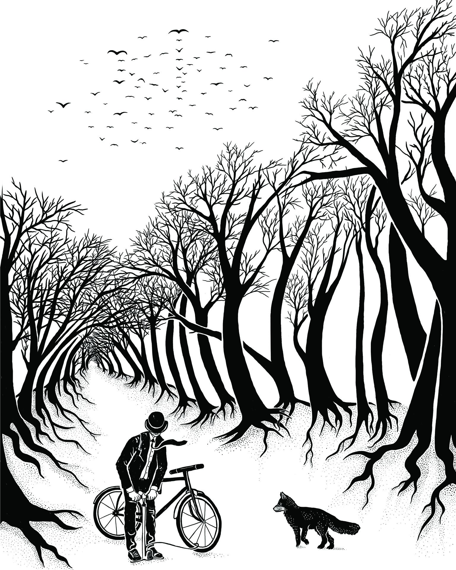 Cyklista ll.