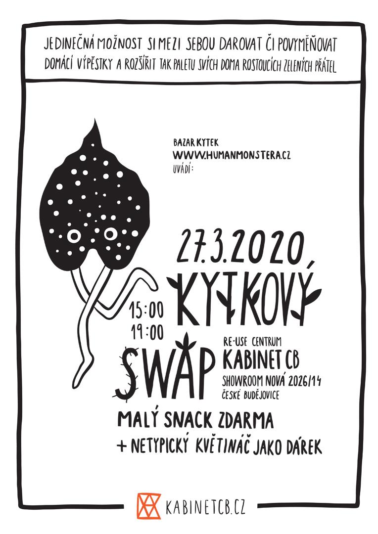 Kytkový swap II.